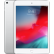 Apple iPad mini 5 Wi-Fi 64GB Silver (MUQX2) 2019